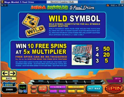 5 Reel Drive Mega Moolah Wild and Free Spin Paytable
